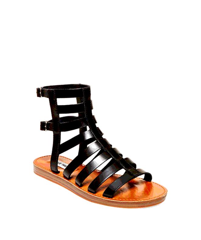 Steve Madden Women's Beeast Gladiator Sandal in Black